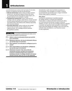 Tipo de Articulaciones - para colorear | PC. Introducción Personalized Items, Med School, Colour Book, Social Science, Leadership, Notebooks, Free Coloring
