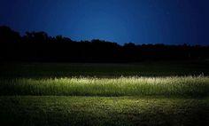 Harold Ross Night Portfolio - BEAUTIFUL