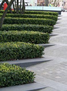 Modern Hedges Green Architecture, Architecture Details, Landscape  Architecture, Pavement Design, Landscape Solutions