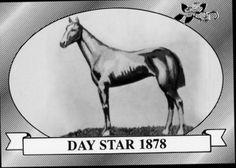 Day Star | Winner of the 4th Kentucky Derby | 1878 | Jockey: Jimmy Carter | 9-Horse Field | $4,050 prize