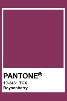 Pantone Boysenberry