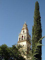 "photo: Córdoba - Mezquita - Torre del Alminar by Robert Bovington from Blog Post ""SPANISH IMPRESSIONS: CÓRDOBA""  http://bobbovington.blogspot.com.es/2011/05/cordoba.html"