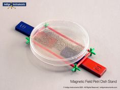 Science Expirements, Magnetic Field, Paper Clip, Kids House, Indigo, Magnets, Instruments, Bar, School