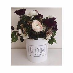 Flowerbox, cvijece u kutiji
