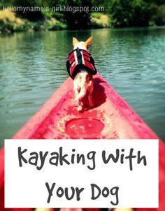 Hello, My Name is Girl: Kayaking With Your Dog