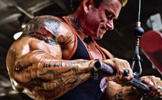 Triceps Brachii 101: The Ultimate Triceps Workout For Mass