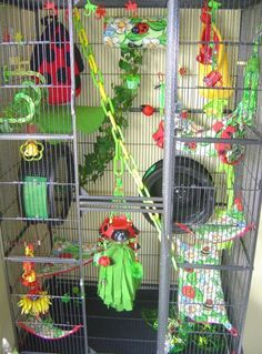 Sugar Glider Cage Accessories