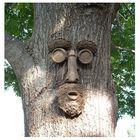 Shade Master Tree Face