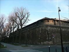 """Yves Duteil  : """" Le mur de la prison d'en face"""""""