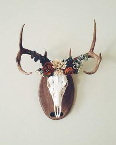 Deer crown ✨ European mount                                                                                                                                                      More
