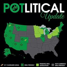 The marijuana landscape Nov 2013