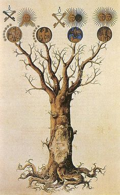 Alchemy: Medieval Tree of Life. An Alchemy artwork. Wicca, Magick, Pagan, Arte Obscura, Inspiration Art, Mystique, Medieval Art, Renaissance Art, Illuminated Manuscript