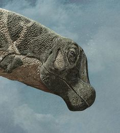 The biggest dinosaurs ever discovered, Quo Magazine November 2014. Detail of the head. Art by Román García Mora.
