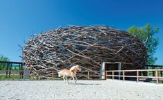 The stork's nest is a symbol of safety, home, and security at a revitalized farm near Semtin, Czech Republic