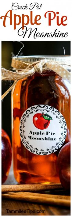 Super easy to make homemade Crock Pot Apple Pie Moonshine Recipe is absolutely delicious! Learn how to make moonshine in the slow cooker with this recipe. Made with everclear this recipe packs a punch (Apple Recipes Slow Cooker) How To Make Moonshine, Apple Pie Moonshine, Moonshine Recipe, Homemade Moonshine, Legal Moonshine, Moonshine Alcohol, Making Moonshine, Homemade Alcohol, Homemade Liquor