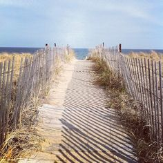 Boardwalk to I-love-this-place
