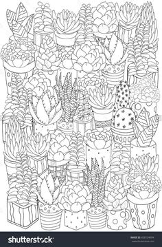 Coloring Book Page For Adult Size Linear Botanical Vector