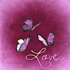 Follow your heart it knows the way:    Nu de lenteisbegonnenwordt het tijd om al je...