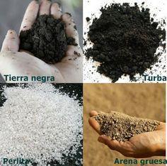 Desde ENTRE PLANTAS Y MACETAS nos muestran toda la información que necesitamos para elaborar el mejor compost para nuestras plantas cultivadas en macetas. ¡Más bonitas que nunca!