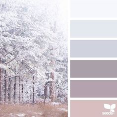 today's inspiration image for { winter tones } is by @margaretpodmorephotography ... thank you, Margaret, for another gorgeous #SeedsColor image share!