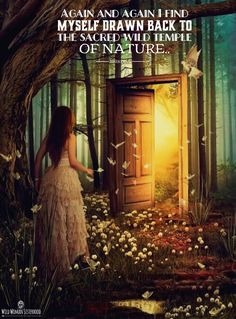 Again and again I find myself drawn back to the sacred, wild temple of Nature…