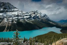 Peyto Lake, Canadian Rockies, Alberta