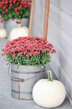 ✓ 75 Rustic Farmhouse Front Porch Decorating Ideas - We have now some concepts for simple and reasonably priced vintage farmhouse decor, you may wish to perceive the place it's attainable to search out these items. Fall Home Decor, Autumn Home, Farmhouse Front Porches, Rustic Farmhouse, House With Porch, Porch Decorating, Decorating Ideas, Decor Ideas, Seasonal Decor