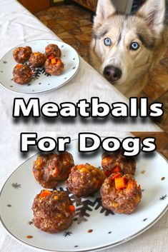 Homemade Meatballs for Dogs Homemade Meatballs for Dogs! Today we are showing you how to make homemade meatballs for dogs. Who doesn't love a good homemade meatball? I know I do, and so to the dogs! This easy DIY Dog Treat recipe will have your dogs happy as can be!