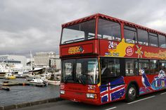 City Sightseeing Reykjavik Hop-On Hop-Off Tour