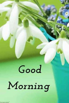 Good morning photos hd with flower bucket.