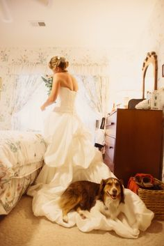 © Jen Yuson Photography, bride-and-her-dog I can just imagine Penney doing the same thing