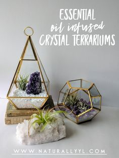 This fun project combines two of my favorite things Essential oils and Crystals into a beautiful decorative piece to enjoy in any room of the house or even your desk in the office too :) Crystal Terrarium Diy, Crystal Garden, Fairy Terrarium, Crystal Altar, Hanging Terrarium, Crystal Grid, Crystal Room Decor, Crystal Bedroom, Meditation Room Decor