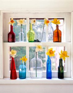 display colored glass bottles on shelves in front of a sunny window.
