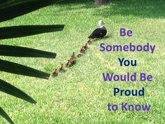 Inspirational Poster - Bird Theme
