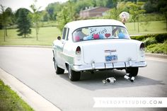 Photography by Samantha McGranahan, The Roxy Studio. Wedding photography, classic wedding, vintage wedding, 1955 Bel Air, just married sign, ivory and pink bridal bouquet, Coxhall Gardens wedding, classic car, #wedding, #vintagecar, #justmarried, #bridalbouquet
