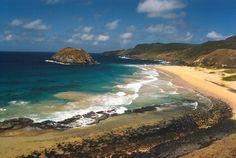 Praia do Leão, Fernando de Noronha