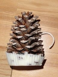 Pin Cone Fire Starters!  Cool camping accessory.