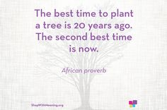 The best time to plant a tree is 20 years ago. The second best time is now. African Proverb