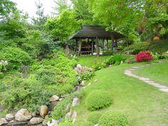 jardines-de-flores-16960.jpg (1600×1200)