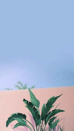 iPhone and Android Wallpapers: Minimalistic Palm iPhone Wallpaper Tumblr Wallpaper, Wallpaper Pastel, Nature Iphone Wallpaper, Aesthetic Pastel Wallpaper, Screen Wallpaper, Aesthetic Wallpapers, Wallpaper Backgrounds, Pastel Background Wallpapers, Wallpaper Ideas