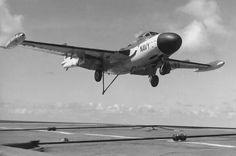 De Havilland Sea Venom FAW.53 (RAN) De Havilland Vampire, Royal Australian Navy, Aircraft Carrier, Royal Navy, Venom, Military Aircraft, Jets, Airplane, Wwii