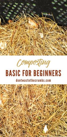 Do you want to learn how to make compost? With these composting tips and tricks, anyone can start a composting at home. Composting is a fantastic way to reduce waste and create black gold for your yard and garden. Learning how to compost is easy, and you can begin composting today! #compostingforbeginners #naturallivingdiy #naturallivinghome Gardening Tools, Gardening For Beginners, Easy Garden, Garden Ideas, Composting At Home, How To Make Compost, Acid Loving Plants, Homemade Cleaning Supplies, Starting A Vegetable Garden