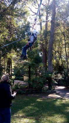 Quadriplegic cerebral palsy, non-verbal, vision impairment, wheelchair... and flying foxes! Dexter loved the freedom and the fun. Video on the website. No limits.