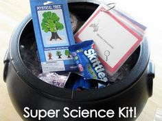 Science kit gift idea....or just ideas for fun experiments.