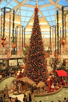 Brazil, Brasilia, Christmas Tree
