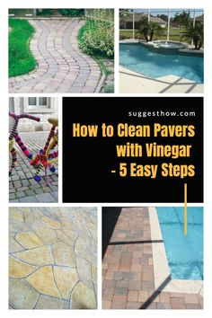 Keeping your pavers clean is an important part of paver maintenance. Dirt and grease can buildup and get into the gaps to make them look dirty. So, how do you clean pavers with vinegar? Although there are many ways, this is the best way to clean pavers efficiently. Follow these 5 steps guide for an amazing result. #homehacks #cleaning #DIY #home #cleaningwithvinegar Cleaning Pavers, Cleaning Diy, Deep Cleaning Tips, Bathroom Cleaning, Using Vinegar To Clean, Paver Stones, How Do You Clean, Clean And Shiny, Grease
