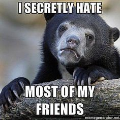 Goofy Advice From the Internet's 10 Most Popular Animal Memes: Confession Bear
