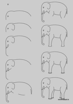 Easy Step by Step Art Drawings to Practice (8)