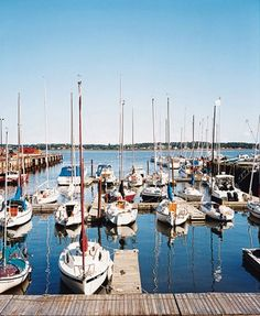 The popular marina in Charlottetown, on Prince Edward Island, Canada. Oh The Places You'll Go, Places To Travel, Places To Visit, Honeymoon Getaways, Dream Vacations, Beautiful Islands, Beautiful Places, Discover Canada, Prince Edward Island