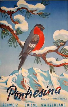 Such a sweetly adorable vintage Swiss travel poster. #bird #Switzerland #vintage…